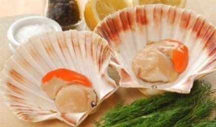 SFPA Urges Safe Shucking to Safeguard Scallops Sector